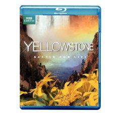 Yellowstone.