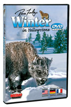 Winter In Yellowstone - Travel Video - DVD.