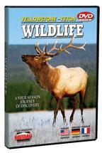 Yellowstone-Teton Wildlife - Travel Video - DVD.