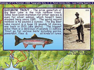 Big Bear Lake (Fishing), Road and Recreation Map, California, America.