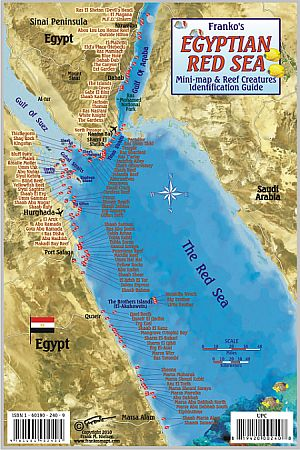 Egyptian Red Sea Fish Card,Tourist Map.