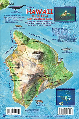 Hawaii, The Big Island, Reef Creatures Guide Card, America.