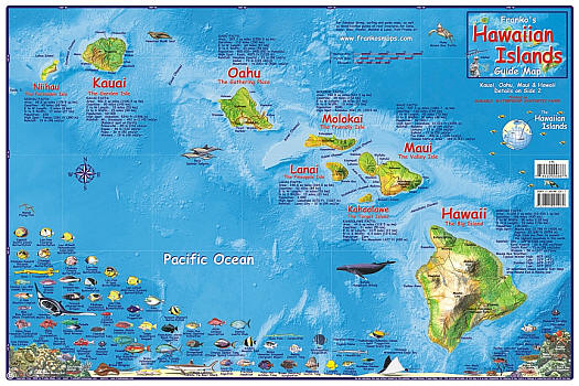 Hawaiian Islands Illustrated Road and Tourist Guide Map, America.