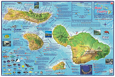 Maui (Diving, Surfing, Hiking), Road and Recreation Map, Hawaii, America.