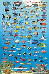 Saipan Fish Card Map.