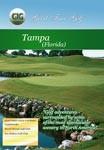 Tampa Florida - Travel Video.