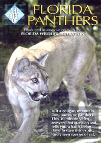 The Best of: Florida Panthers - Travel Video.