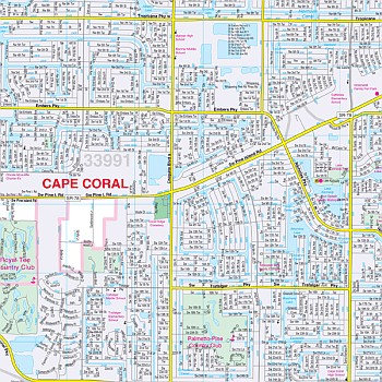 Fort Myers & Lee Co WALL Map, America.