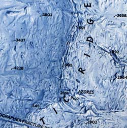 Atlantic Ocean 3D Relief WALL Map.