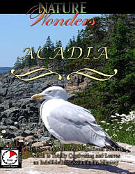 Acadia Maine Travel Video.