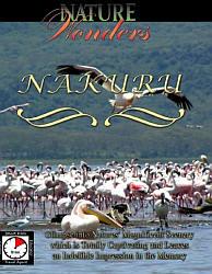 Nakuru Travel Video.