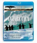 Antarctica - Travel Video - Blu-ray DVD.