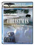 Christmas in Yellowstone - Nature Video - DVD.