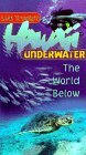Hawaii Underwater - Travel Video.