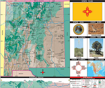 "New Mexico Thematic Primary ""Classroom"" K-2 WALL Map."